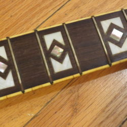 National Guitar Resoglas Fingerboard